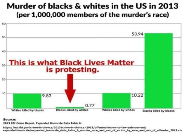 murders-by-blacks-and-whites-2